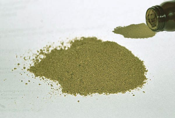 Grüne Propolis Pulver - Rohpropolis